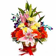 Buy/Send Vivid Designer Floral Basket - YuvaFlowers