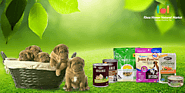 Buy Organic Dog Food Products Online