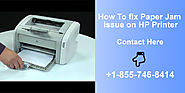 How To fix Paper Jam issue on HP Printer | Contact +1-855-746-8414