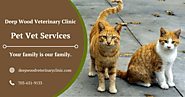Best Pet Services in Centreville VA