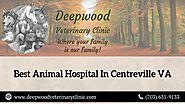 Best Animal Hospital In Centreville VA