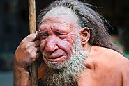 Thank Neanderthals for Your Immune System | Smart News | Smithsonian