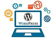 12 Reasons why Entrepreneurs Need To Utilize WordPress for their Online Business