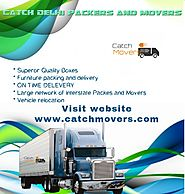 Professional Delhi Packers and Movers