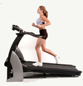 Top Treadmill Ratings | Treadmill Buying Guide - Consumer Reports