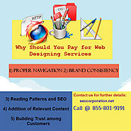 Why Should You Pay for Web Designing Services?