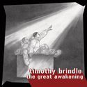timothy brindle - The Great Awakening
