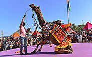 Pushkar Mela tour is the best way to know and link with rajasthan haven & culture.