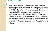 Hassel Free Pest Control Services by Pest Control Ghaziabad