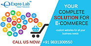 ECommerce Web Development Company - Responsive eCommerce Websites