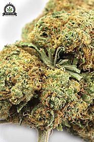 Instructions To Purchase Lawful Recreational Weed In The Online Time – Bud Lab