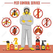 Top Pest Control Services In East Delhi