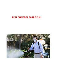 PPT - Avail the best Pest Control Services In East Delhi PowerPoint Presentation - ID:8159103