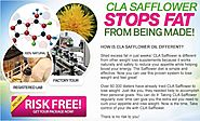 CLA Safflower Oil (@safflower_oil) | Twitter