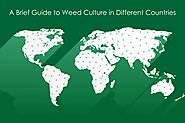 Acceptance of Weed Culture in various countries