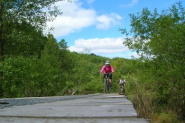 7stanes - Mabie Mountain Biking Trails - Scotland - Dumfries and Galloway