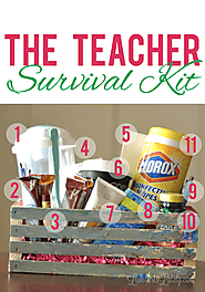 The Teacher Survival Kit | Lamberts Lately