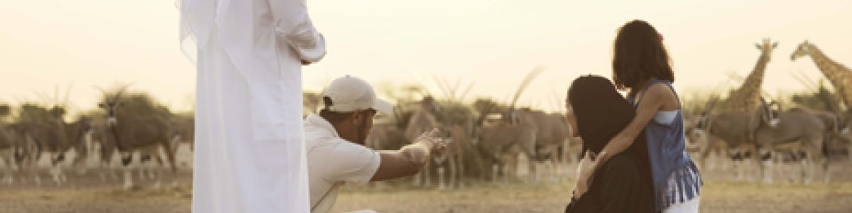 Headline for Some Activities to do on Sir Bani Yas Island - To Enjoy a Truly Unforgettable Experience
