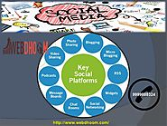 Stay in touch with loyal and existing clients with best Social Media Optimization Companies