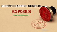 71 Powerful Growth Hacking Examples & Techniques [Secrets EXPOSED!]