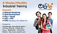 6 Weeks/Months industrial training by craze info