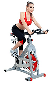 Top 10 Best Exercise Bikes in 2018 Reviews (February. 2018)