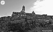 Siena - a jewel of history in the Tuscan hills - Il Curioso Errante
