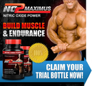 What is No2 Maximus Nitric Oxide Muscle Building All About?