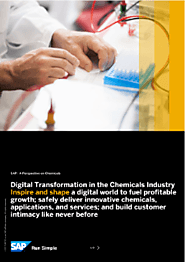 SAP: A Perspective on Chemicals