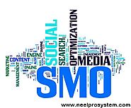 NeelPro System provides professional SEO/SMO Services