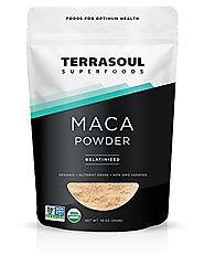 Terrasoul Superfoods Organic Gelatinized Maca Powder, 16 Ounce