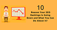 10 Reason Your SEO Rankings is Going Down And What You Can Do About It? - SEO Advanced Techniques