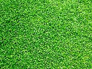Multifarious Benefits of Artificial Turf Laying!
