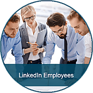 Buy LinkedIn Employees | Price Starts From $15