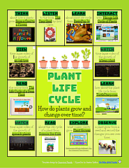 Plant Life Cycle Multimedia Text Set