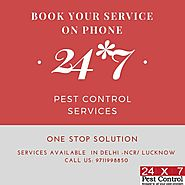 Book You Pest Control Service Online with 24x7pestcontrol
