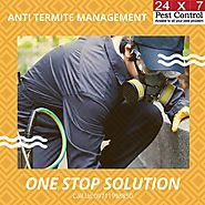 24x7pestcontrol - Protect your beautiful home, Hire Pest...