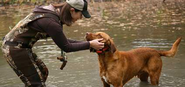 Hunting Dogs Equipment and Accessories: Modern GPS Pet Tracking Systems