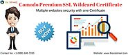 Comodo Premium SSL Wildcard Certificate In Affordable Price