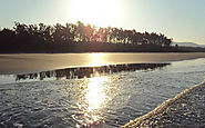 Shrivardhan Beach Guides for Family - Konkan Beach