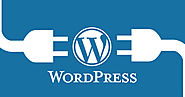 Top Tricks to Choose Best PSD to WordPress Conversion Company