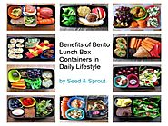 Benefits of Bento Lunch Box Containers in Daily Lifestyle