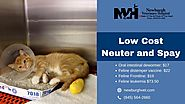 Low Cost Neuter and Spay by Newburgh Veterinary