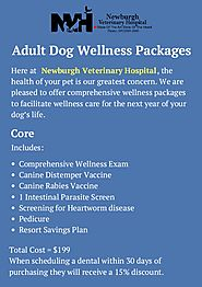 Great Adult Dog Wellness Packages by Newburgh Vet