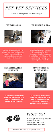 High Quality Pet Vet Services in Newburgh
