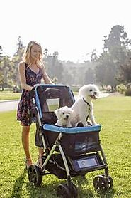 Dog Strollers For Medium Dogs