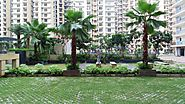 Nirala Estate Noida Extension – Explore 2/3 BHK Residential Apartments – Nirala Estate Noida Extension