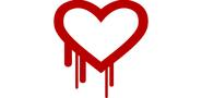 Heartbleed Heartache: Who's Capitalizing Off of Security Flaws? - inSegment Digital Marketing Blog