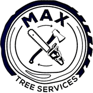 Best Tree Removal Services Melbourne | Max Tree Services