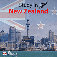 Study in New Zealand - Maple Inc